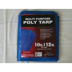 10'x12' Poly Tarp W/ medal grommets every 3 feet and on each corner. UV treated